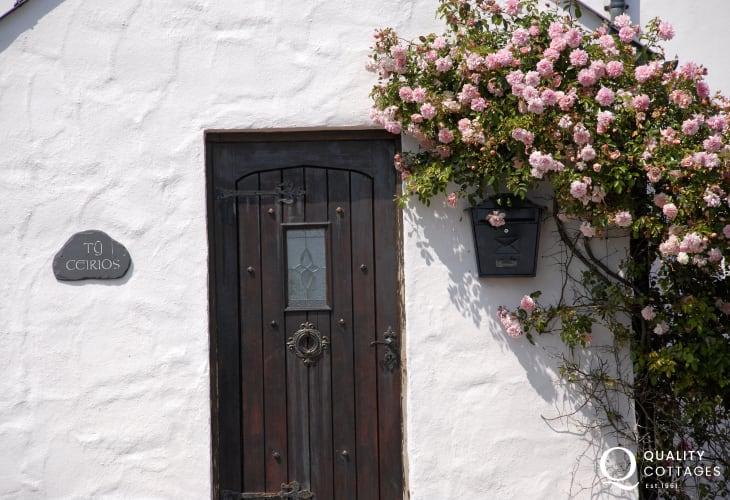 Bosherston Lilly Ponds - cosy holiday cottage