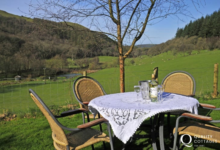 Holiday cottage Cambrian mountains - garden