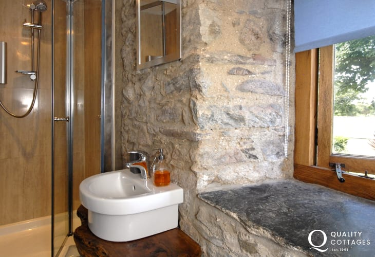 St Davids luxury holiday home - twin en-suite shower room