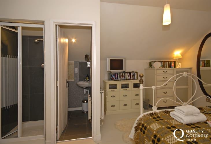 Llansteffan beach holiday cottage - master en-suite shower with separate toilet