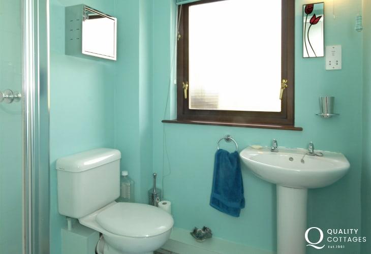 Solva holiday home - upper floor shower room