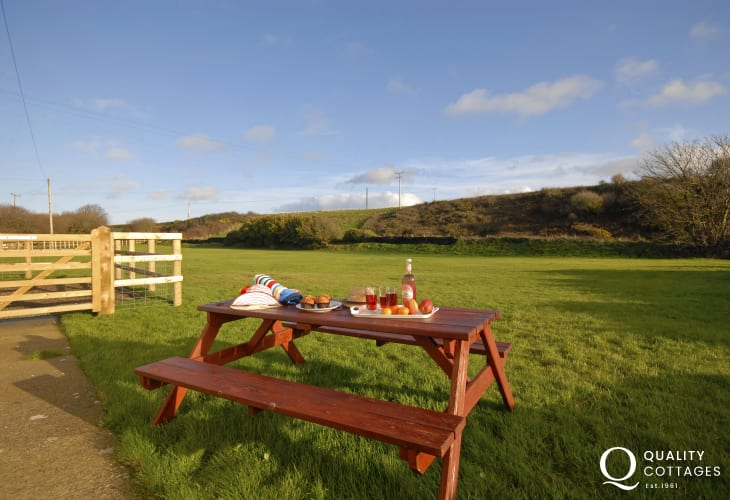 Dog friendly Porthgain holiday cottage with large field garden