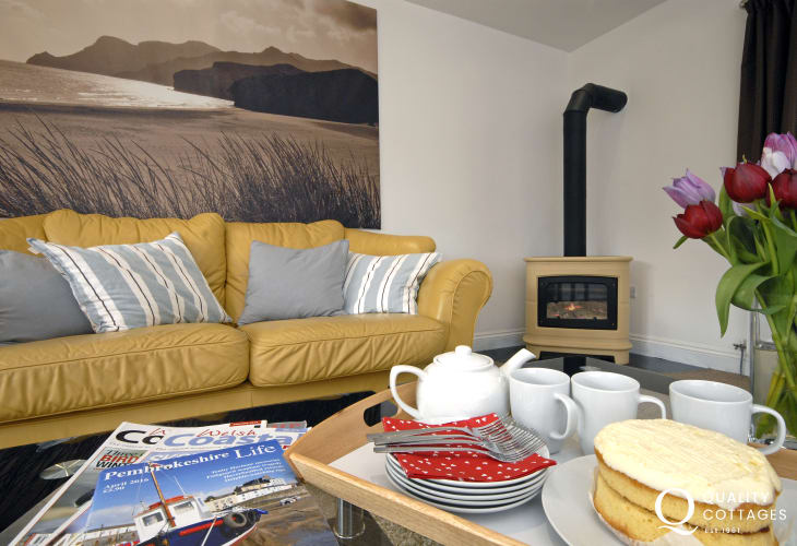 Amroth holiday house sitting room with gas log-burning stove
