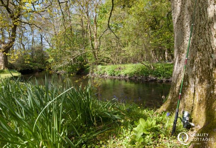 Ceredigion luxury holiday cottage - garden