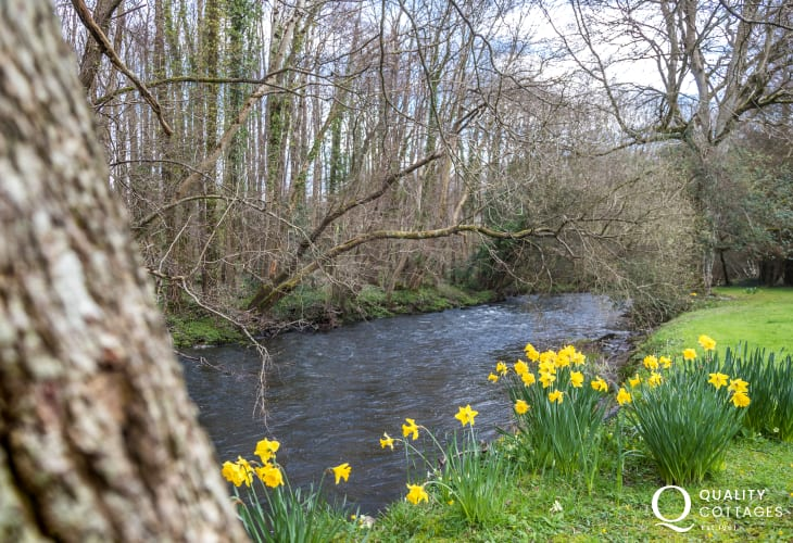 River Aeron just a short walk from Rose Cottage