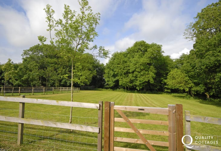 1.5 acre enclosed paddock