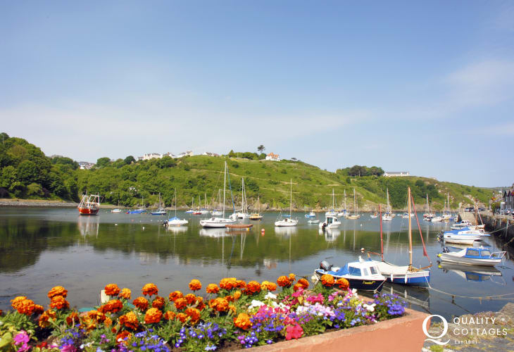 Enjoy Lower Town Harbour, Fishguard