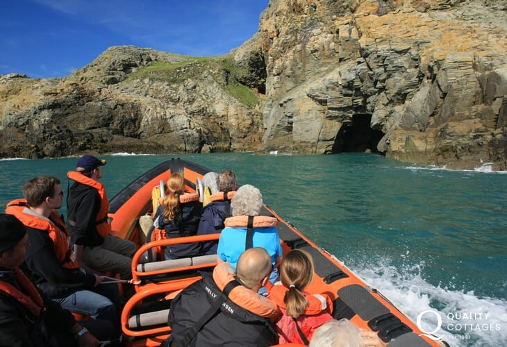 Book a boat trip to explore the coast and Ramsey Island