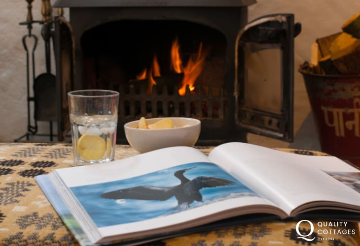 Stackpole holiday cottage - fire