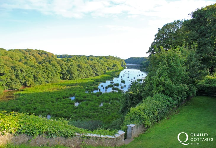 Stackpole is a unique combination of natural and man-made landscapes. The freshwater lakes were created over 150 years ago by the Cawdor family