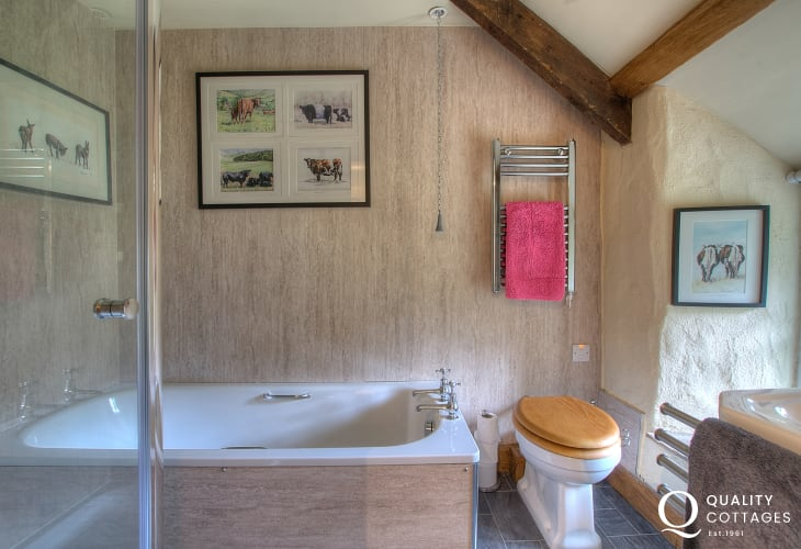Large Pembrokeshire holiday house - double ensuite bedroom