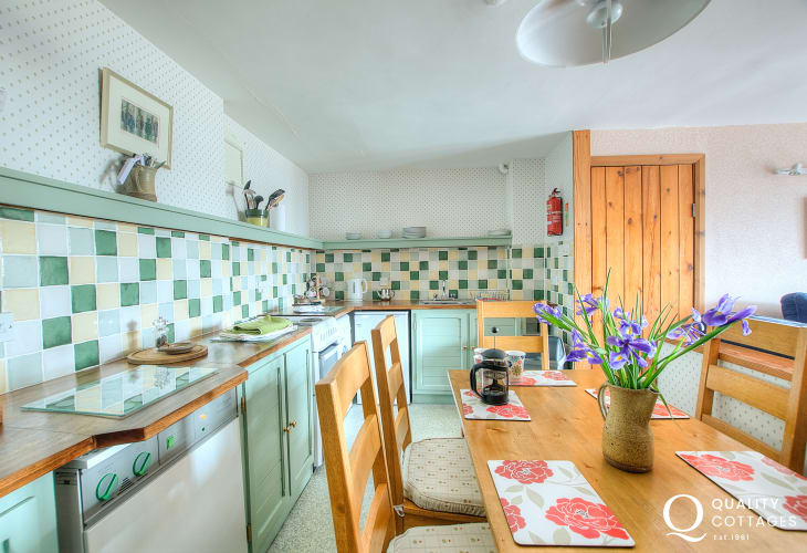 St Davids self catering - kitchen