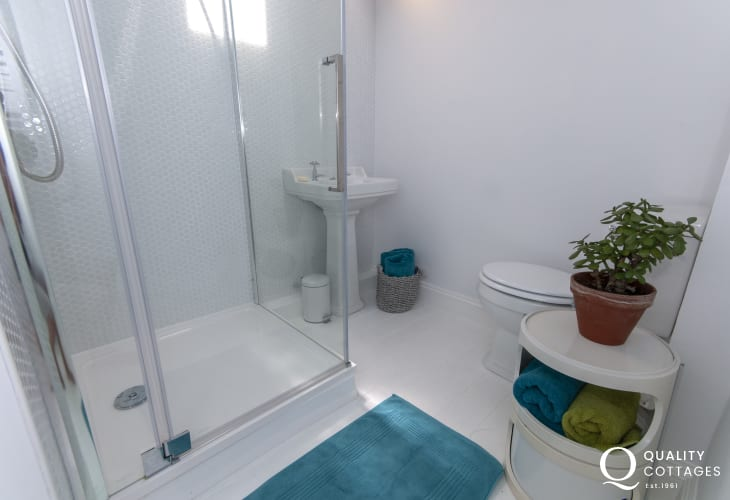 Creselly holiday home - Double en suite shower
