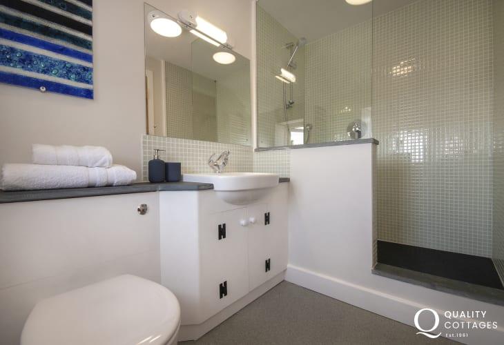 St Davids holiday cottage - master en-suite shower