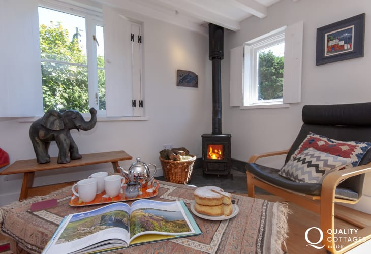 Cosy holiday cottage near St Davids with log burner