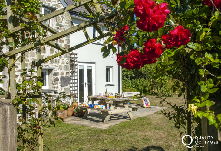 Holiday cottage near St Davids and Whitesands Bay - enclosed garden