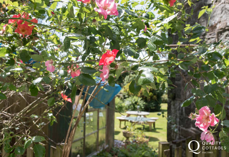 Cwm pennant holiday cottage - garden