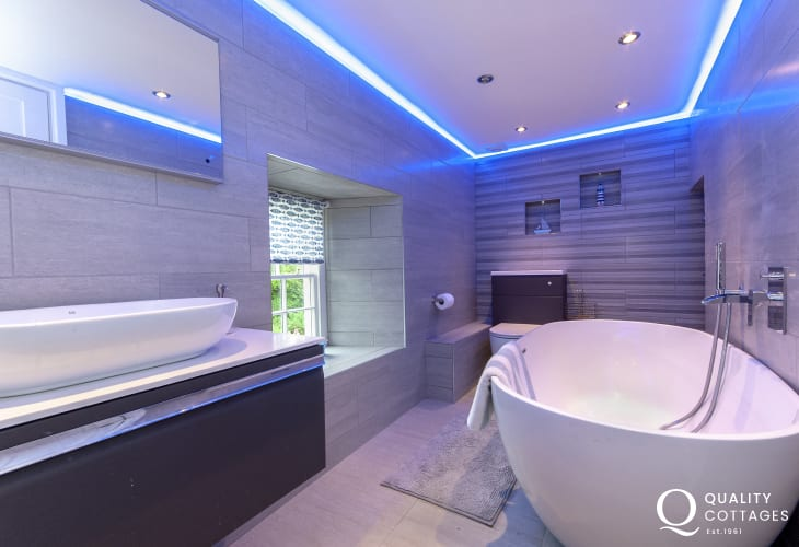 North Pembrokeshire holiday home - luxury family bath room