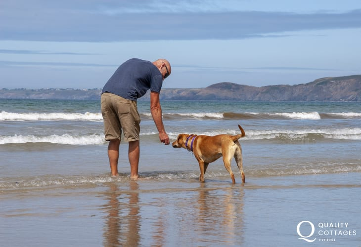 On Newgale beach - most Quality Cottages welcome pets