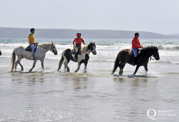 Nolton Riding Stables offer countryside trekking or thrilling beach rides