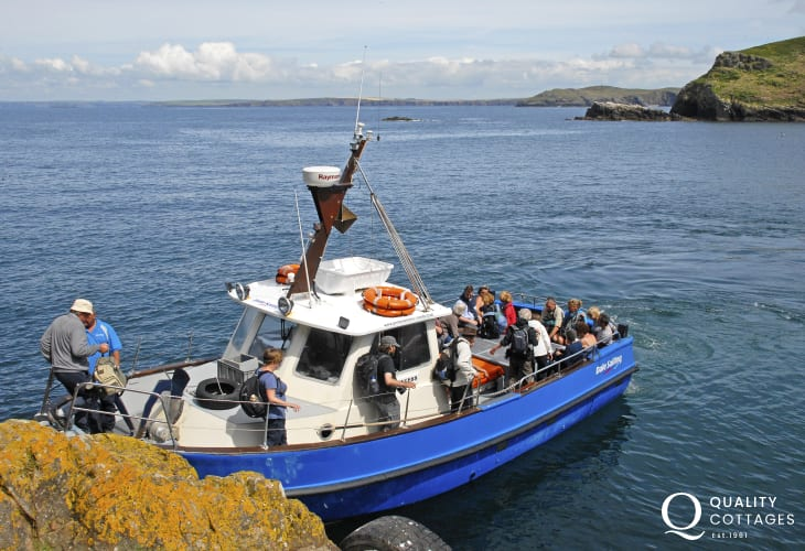 The boat leaves from Martins Haven to explore the islands of Skomer, Skokholm and Grassholm