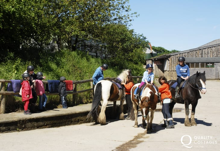 Nolton Riding Stables caters for all levels of rider experience