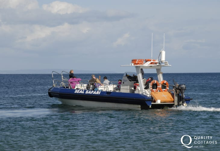 Island Cruise or an exhilarating seal safari with Tenby Boat Trips