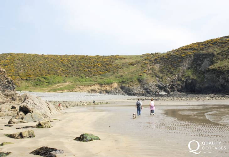Walk to the dog friendly sheltered cove of Gwdan at low tide