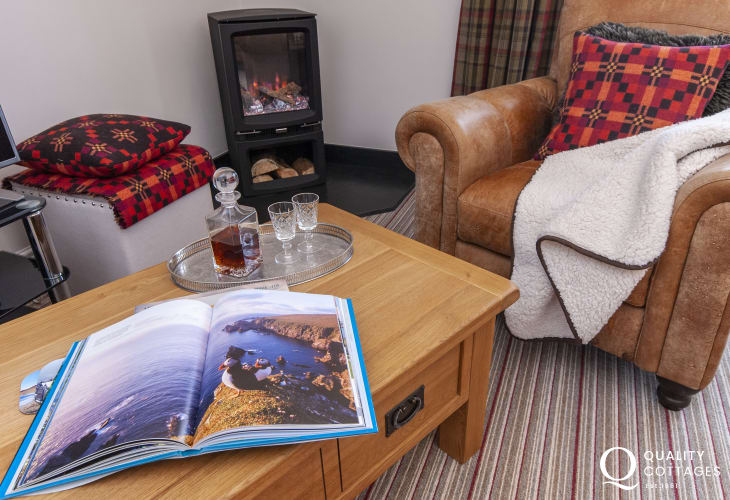 St Davids North Pembrokeshire apartment - cosy living room with electric log burner