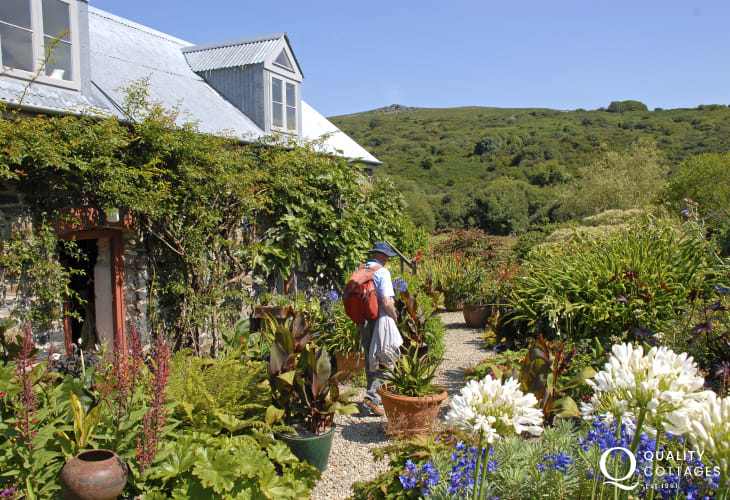 Dyffryn Fernant Garden, near Fishguard is a hidden gem of a Welsh garden set in 6 acres