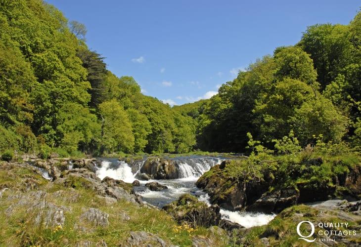 The stunning Cenarth Falls near Newcastle Emlyn
