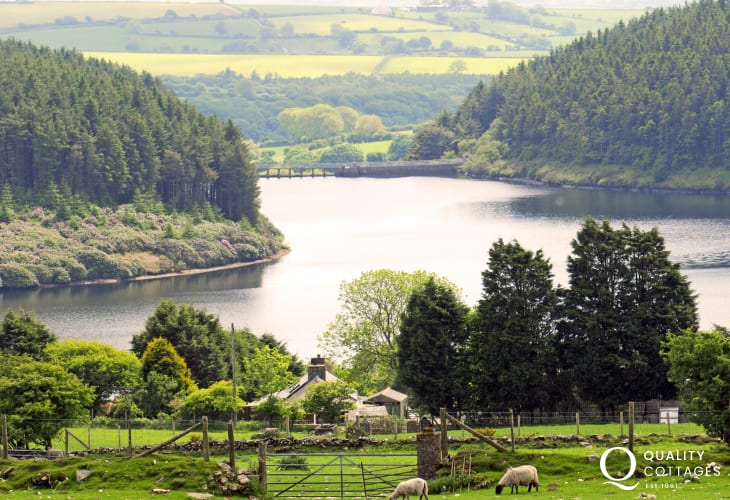 Llys y Fran Reservoir perfect for walking, cycling, fishing and water activities