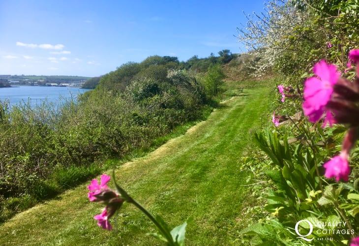 Garden with flowers Pembrokeshire