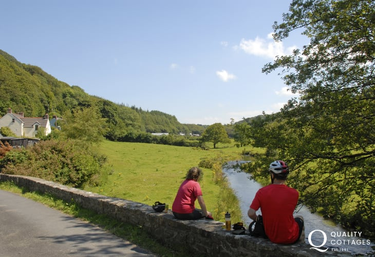 The ancient and mysterious Gwaun Valley - perfect for lovers of wildlife and a haven of peace and tranquility