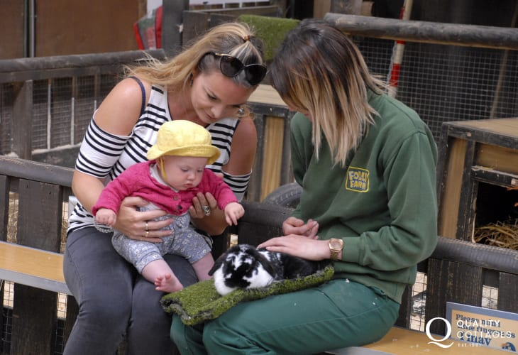Folly Farm near Narberth is just one of the many family attractions within an easy drive