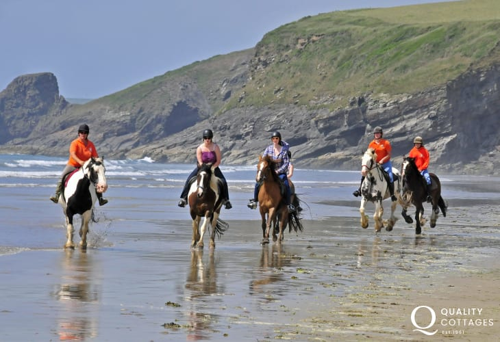Nolton Riding Stables offer pony trekking in the countryside or beach rides on Druidston Beach
