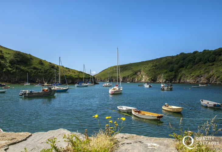 Solva harbour is the the perfect place for a walk or crabbing