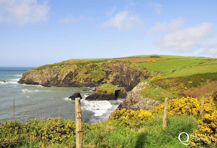 Explore the beautiful Pembrokeshire National Coast Park