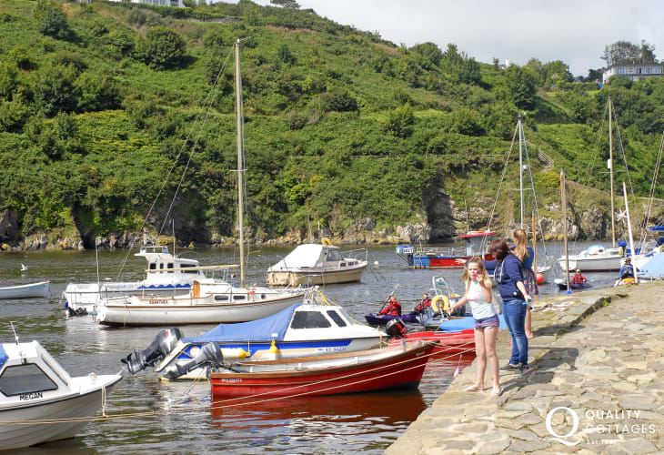 Enjoy Lower Town Harbour, Fishguard for a peaceful stroll or crabbing off the wall