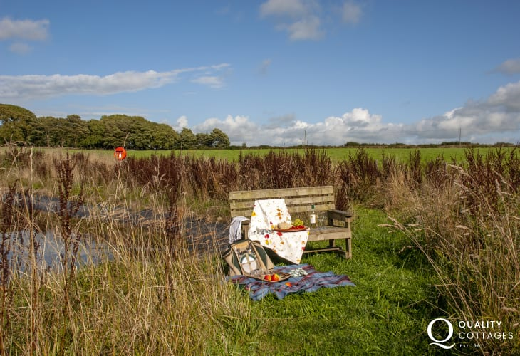 Relax alongside the pond in the wild meadow at Lower Lochturffin