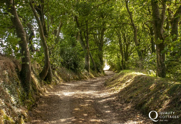 The private tree lined drive-way to Lower Lochturffin
