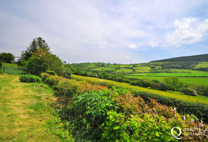 Radnor Forest  holiday cottage - view