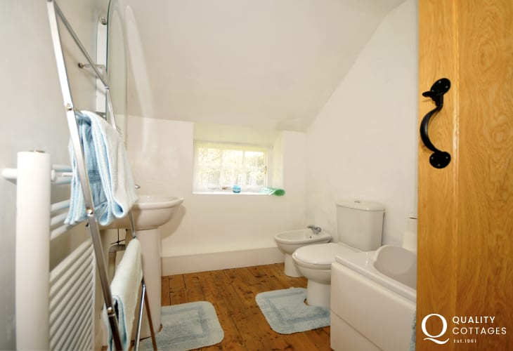 Cottage in Wales pet friendly  - bathroom
