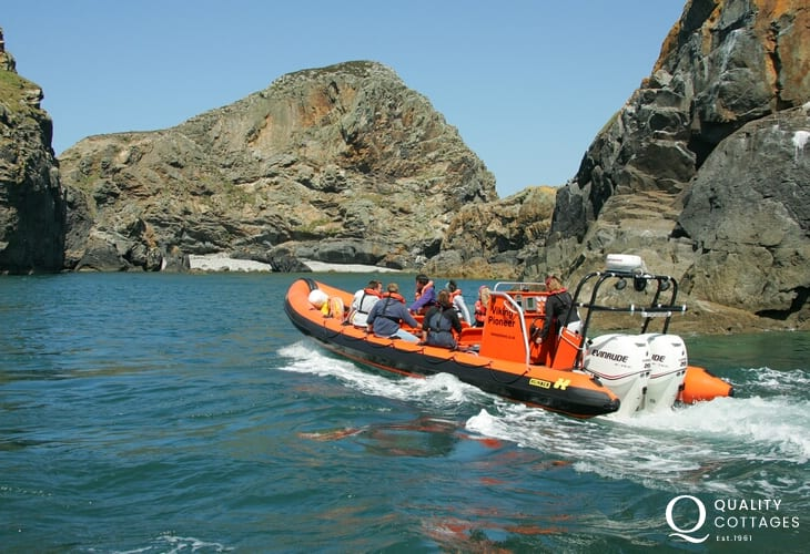 Explore the islands of Skomer, Grassholm and Ramsey (RSPB) by boat - exhilarating!