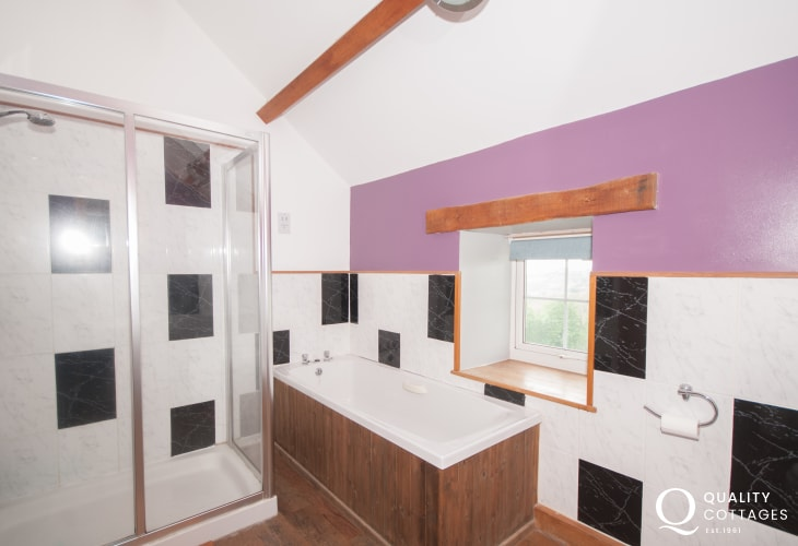 Harlech holiday cottage - bathroom