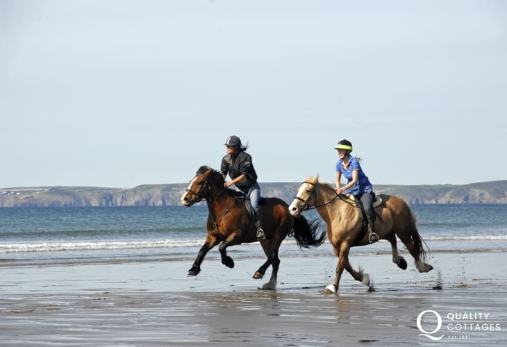 Try horse riding through the surf with Nolton Riding Stables