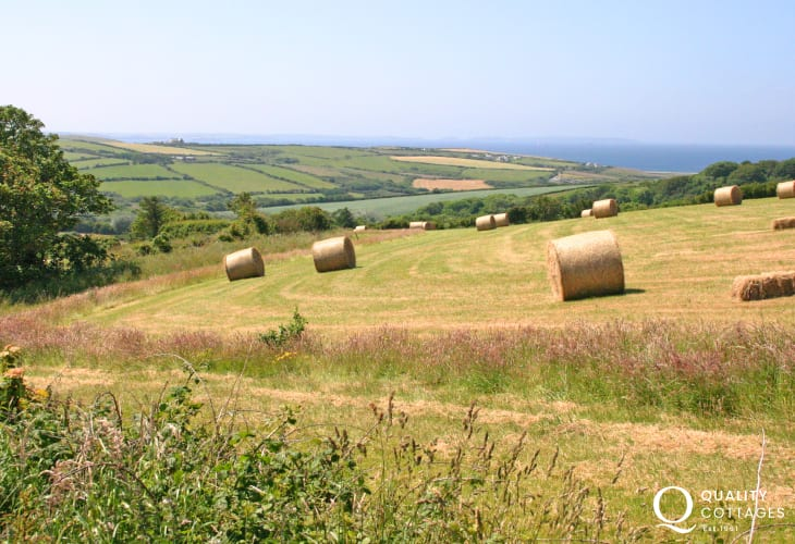 Enjoy fabulous views from the meadow to the sea at Newgale Sands