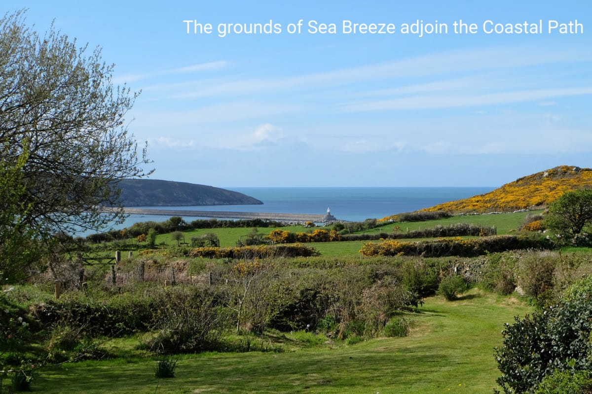 Holiday cottage with views of Fishguard Bay