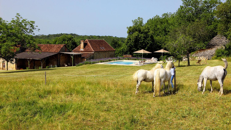Villa Garden, L'Ancienne Borie, Hautefort, Dordogne.