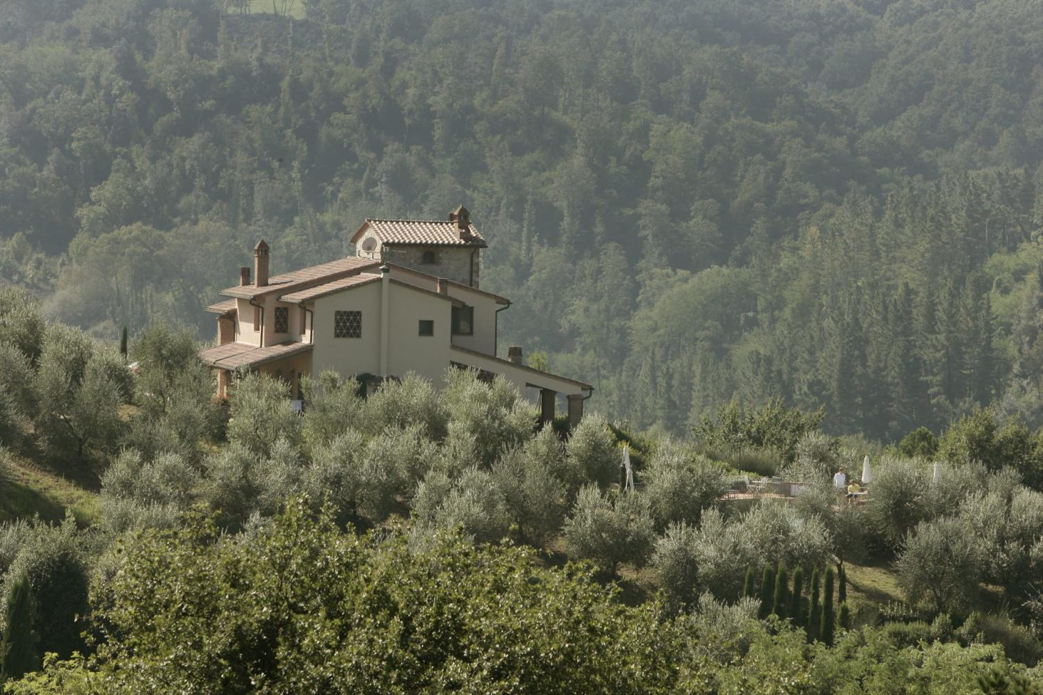 Chianti traditional villa rental